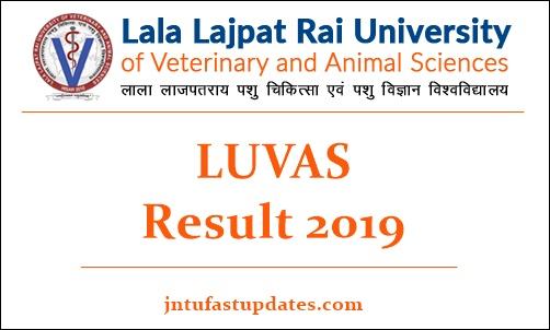 LUVAS Result 2019