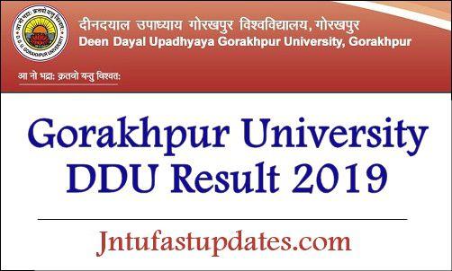 DDU Result 2019