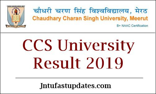 CCS University Result 2019 (Released) - BA B Sc B Com 1st 2nd 3rd