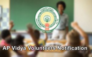 AP Vidya Volunteers Notification 2019
