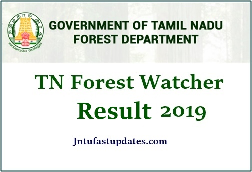 TNFUSRC Forest Watcher Result 2019